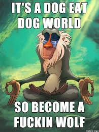 Rafiki The Wise [MEME] on Pinterest | Galleries, Lion and Meme via Relatably.com