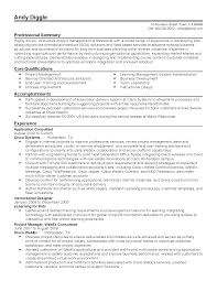 professional systems application consultant templates to showcase resume templates systems application consultant