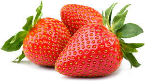 Resultado de imagen de fresa