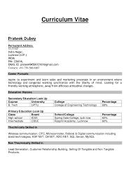 sample resumecurriculum vitae prateek dubey permanent address    indra nagar  lucknow  u p   computer