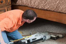 Image result for professional bed bug control service reviews