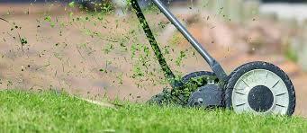 Thuốc diệt cỏ tại một thời điểm cụ thể