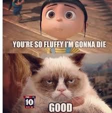 Grumpy Cat on Agnes from Despicable Me | Agnes | Pinterest ... via Relatably.com