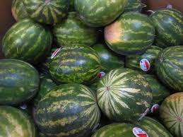 Image result for watermelon whole