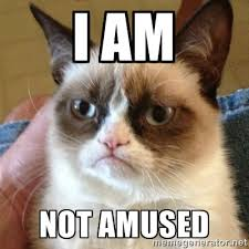 I am Not Amused - Grumpy Cat | Meme Generator via Relatably.com