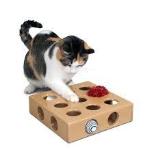 #3841 Peek-and-<b>Play Toy</b> Box – Pioneer <b>Pet</b>