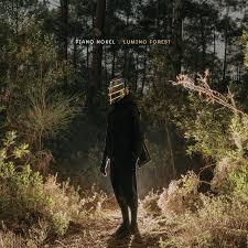 <b>Lumino</b> Forest by <b>Piano Novel</b> on Spotify