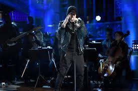 <b>Eminem Kamikaze</b>
