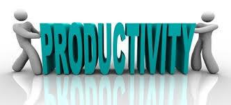 Makanan Sehat yang Dapat Meningkatkan Produktivitas