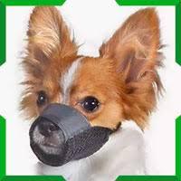 Намордники для <b>собак</b> | Купить кожаные и металлические ...