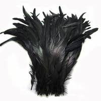 Wholesale Rooster Feather UK