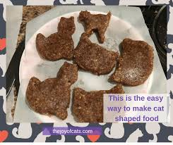 This is the easy way to make <b>cat shaped</b> food