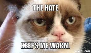 Bfr Grumpy Cat Meme Generator - DIY LOL via Relatably.com