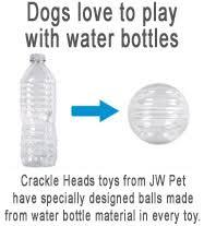 Με τι αγαπούν να παίζουν οι σκύλοι;