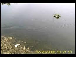 <b>Танк</b>-<b>амфибия</b> на радиоуправлении <b>YED Amphibious</b> Green Tank ...