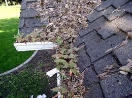 Image result for Fouled gutters