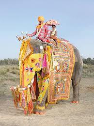 <b>Фестиваль слонов</b> в <b>Индии</b> | Fresher - Лучшее из Рунета за день