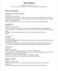 sales representative   free resume samples   blue sky resumesold version