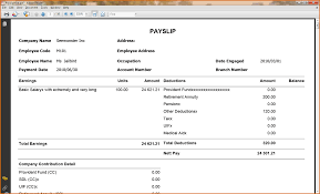 doc proforma payslip doc proforma payslip basic payslip template excel pay stub templates and premium proforma payslip