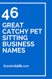 great catchy pet sitting business s pets photos and pet make one special photo charms for your pets compatible your pandora bracelets 46 great catchy pet sitting business s