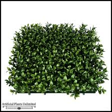 x plush wall: click to enlarge duraleaf plush boxwood living wall outdoor