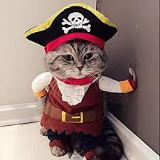 <b>Cat</b> Clothing - Amazon.co.uk