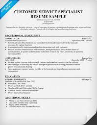 Resume Objective Examples For Customer Service  resume examples     Sample Resume of Customer Service Support Resume