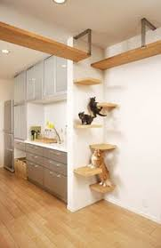 creative cat houses and cool cat bed designs cat lovers 27 diy solutions
