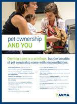 Dog Bite Prevention: Responsible Dog Ownership