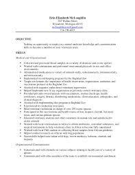 writing cv veterinary veterinary technician resume examples
