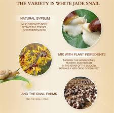 Buy Anti Wrinkle Anti Aging <b>Snail Moist Nourishing</b> Facial Cream ...