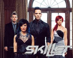 Image result for skillet