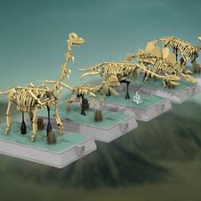 LEGO IDEAS - - Dinosaurs Fossils Skeletons - Natural History ...