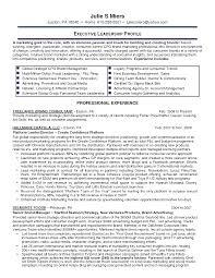 entry level marketing resume entry level marketing resume 133