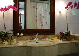 decoration bathroom sinks ideas: awilda d james has  subscribed credited from