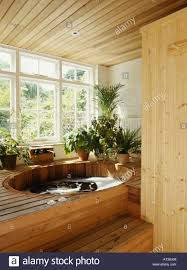 washstand bathroom pine: wooden steps up to hot tub in bathroom with pine panelled ceiling and group of houseplants
