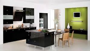 Black White Kitchen Designs Kitchen Fantastic Black Kitchen Decor With Modern Kitchen