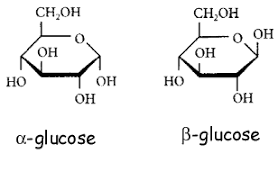 cellulose   nsb notesglucose gif