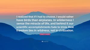 charles a lindbergh quote i realized that if i had to choose i charles a lindbergh quote i realized that if i had to choose
