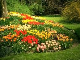 puzzle bahçe