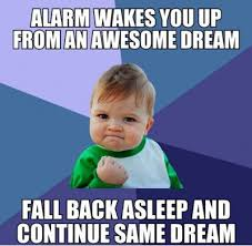 Funniest_Memes_alarm-wakes-you-up-from-awesome-dream_13394-awesome ... via Relatably.com