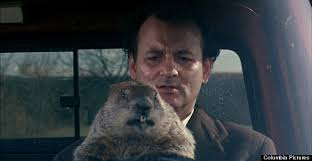 o-GROUNDHOG-DAY-4-570.jpg