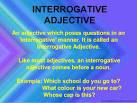 interrogative adjective