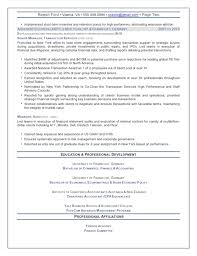 Finance Professional Resume   Resume Maker  Create professional     Rufoot Resumes  Esay  and Templates