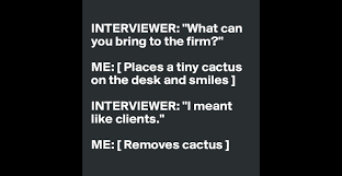 interviewer what can you bring to the firm me places a tiny interviewer what can you bring to the firm me places a tiny cactus on the desk and smiles interviewer i meant like clients