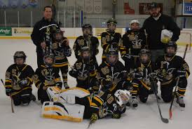 archived news valley youth hockey association team dera wins 2nd place in oswego tour nt white division