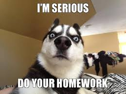Websites that do homework for you    pay me to do your homework