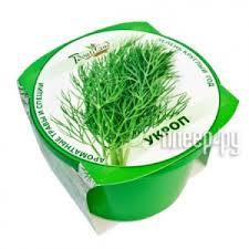 <b>Растение BontiLand Зелень круглый</b> год Укроп 411814