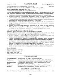 It Professional Resume Examples  resume template professional     Brefash