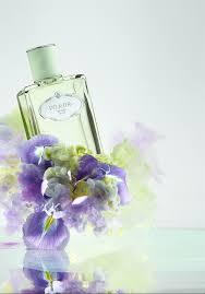 <b>LES INFUSIONS</b> DE <b>PRADA</b> DISCOVERY BOX: <b>Iris</b> - The Perfume ...